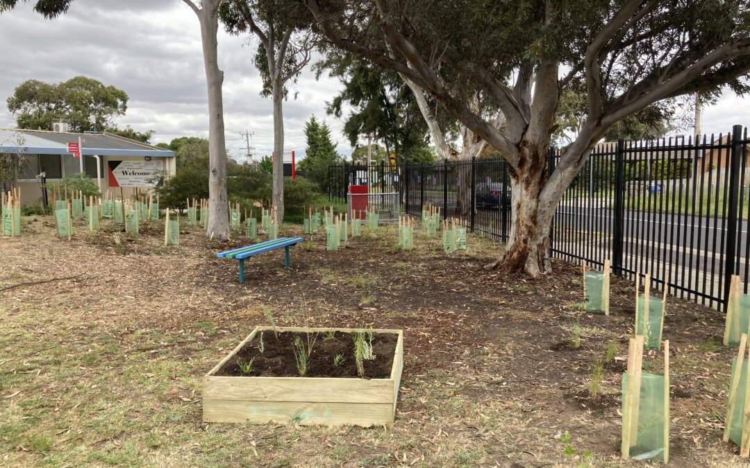 Bethal Primary School Outdoor Sensory and Tranquillity Garden